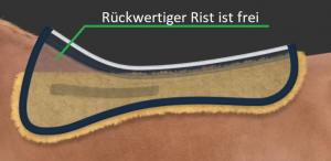 Screenshot_2019-01-31 Sattelkissen free